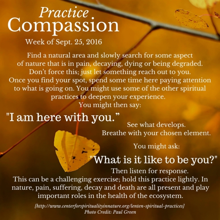 practice-compassion-9-25-16