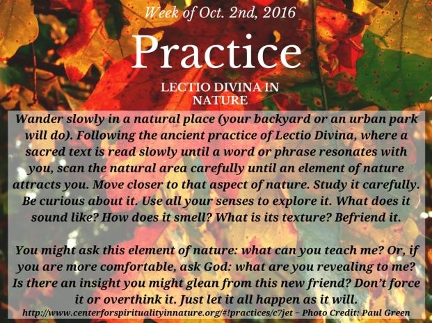 practice-lectio-divina-10-2-16